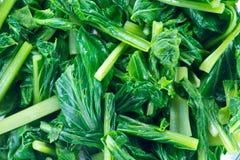 菜绿色无头甘蓝是在一个碗的片断有在t的空的空间的 免版税库存图片