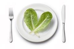 菜莴苣饮食 库存照片