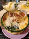 菠菜用乳酪 免版税库存图片