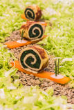 菠菜煎蛋卷蜗牛 库存照片