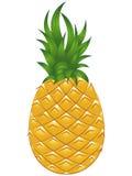 菠萝传染媒介例证 库存照片
