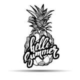 菠萝传染媒介果子食物热带夏天设计例证背景甜点 库存照片