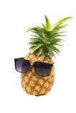 菠萝佩带的太阳镜 库存图片