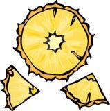 菠萝切片乱画样式传染媒介背景 在白色隔绝的凤梨和平 库存图片