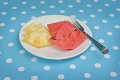 菠萝和西瓜 库存图片
