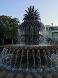 菠萝喷泉 库存图片