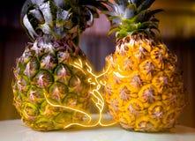菠萝恋人结合亲吻在亲密的光 男孩和女孩 一个热带假期的概念 免版税库存照片