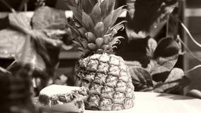 菠萝成熟果子在庭院里,转动 股票视频