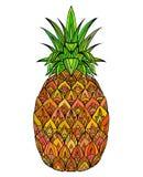 菠萝的五颜六色的乱画例证 向量例证