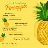 菠萝的保健福利 新鲜水果 免版税库存图片