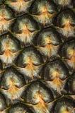 菠萝皮肤 免版税图库摄影