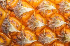 菠萝纹理背景 库存图片
