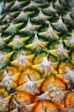 菠萝纹理 免版税库存照片