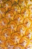 菠萝芽特写镜头 免版税图库摄影