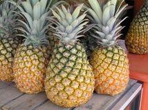 菠萝,新鲜水果,波多黎各 免版税图库摄影