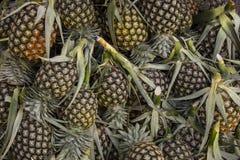 菠萝水果市场在泰国,它是更加美味的 免版税库存图片