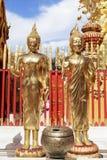 菩萨在Wat Phra那土井素贴 图库摄影