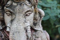 菩萨大象 库存图片