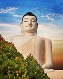 菩萨大雕象在本托特,斯里兰卡 库存图片