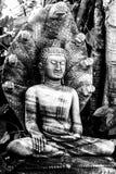 菩萨由纳卡人保护了七个头 库存照片