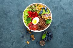 菩萨碗晚餐用煮沸的鸡蛋,鸡豆,新鲜的蕃茄,甜椒,黄瓜,皱叶甘蓝,红洋葱,绿色新芽 免版税库存图片