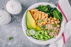 菩萨碗沙拉用菠菜,奎奴亚藜,烤了鸡豆、烤鸡、鲕梨、edamame豆、黄瓜、芝麻和南瓜 免版税库存图片