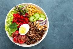 菩萨碗盘用煮沸的鸡蛋,鸡豆,新鲜的蕃茄,甜椒,黄瓜,皱叶甘蓝,红洋葱,绿色新芽,菠菜 免版税库存照片