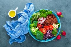菩萨碗膳食用无头甘蓝、菠菜和唐莴苣叶子、糙米、蕃茄、硬花甘蓝、萝卜、新鲜的绿色新芽和松果 Hea 图库摄影