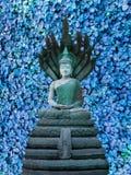 菩萨纳卡人蓝色三叶草背景 免版税图库摄影