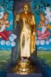 菩萨金雕象在马塔勒,斯里兰卡 图库摄影