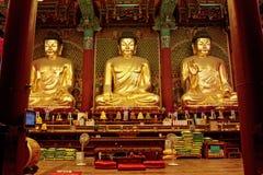 菩萨金黄jogyesa汉城寺庙 免版税图库摄影