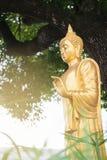 菩萨金黄雕象 免版税库存图片
