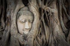 菩萨雕象和古老废墟 库存照片