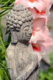 菩萨雕象在有桃红色花的一个花园里 库存图片