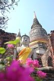菩萨雕象在阿尤特拉利夫雷斯,泰国 免版税库存照片