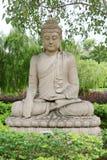 菩萨雕象在bodhi树下 库存照片