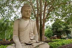 菩萨雕象在bodhi树下 免版税库存图片