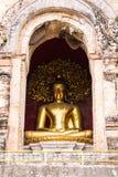菩萨雕象在Chedi, Wat Chedi肺Chiangmai 免版税库存照片