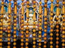 菩萨雕象在Namdroling修道院里 库存图片