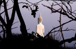 菩萨雕象的后部 免版税库存照片