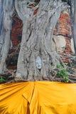 菩萨雕象的面孔在树的 免版税库存照片