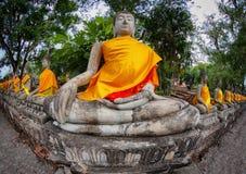菩萨雕象行在古庙的 泰国,阿尤特拉利夫雷斯 免版税库存图片