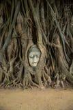 菩萨雕象头在阿尤特拉利夫雷斯,泰国 免版税图库摄影