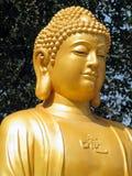 菩萨雕象 免版税图库摄影