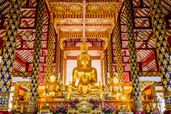 菩萨雕象wat suandok chiangmai泰国 免版税库存照片