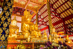 菩萨雕象wat suandok chiangmai泰国 库存图片