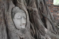 菩萨头的图象Wat的Mahathat 免版税库存照片