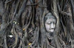 菩萨` s头在Wat玛哈那 库存照片