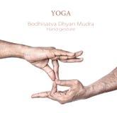 菩萨dhyan mudra瑜伽 库存照片
