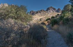 菲尔莫尔足迹和器官山在新墨西哥 图库摄影